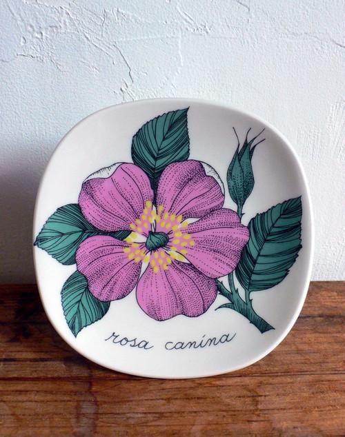 Botanica:Rosa Canina(ロサ・カニーナ)ADW38