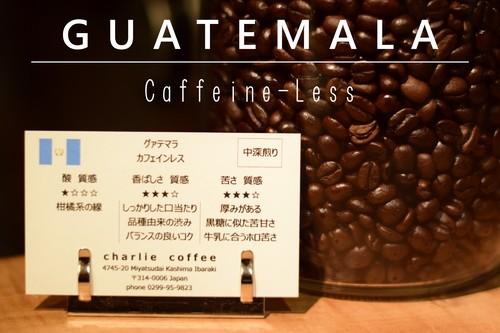 中深煎り/グァテマラ デカフェ(カフェインレス)スイスウォーター式 100g
