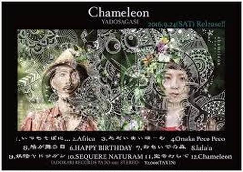 カメレオン / ヤドサガシ