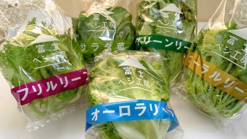 レタス食べくらべセット(5種類×各1個)