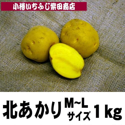 1kg袋 北あかり M~L サイズ 北海道羊蹄山麓産