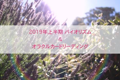 【上半期ver】2019年がもっと楽しくなる! バイオリズム&オラクルカードリーディング