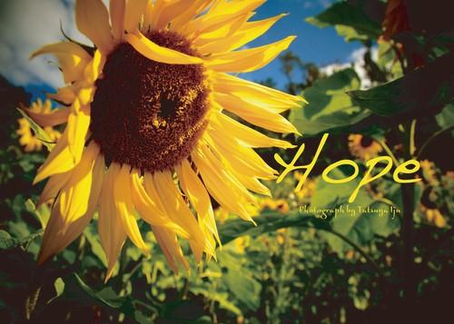 フォトブック「hope」
