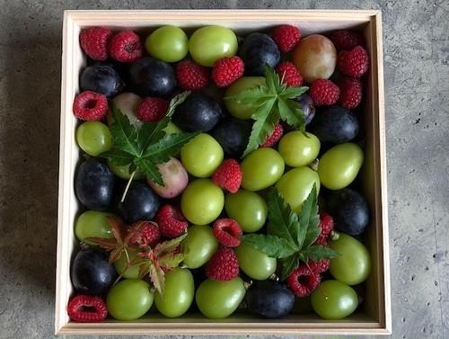 秋の果実箱/木箱