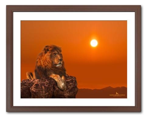 DREAMING LION(夢みるライオン)