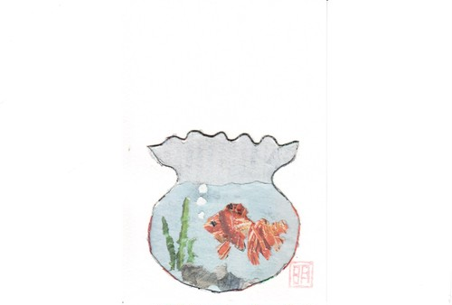 A26 金魚
