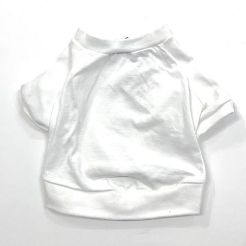 Kelty ラグランT-shirt(WHITE)