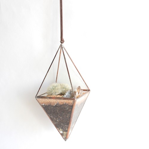 """hanging terrarium""""八面体"""" / copper [サボテン]"""
