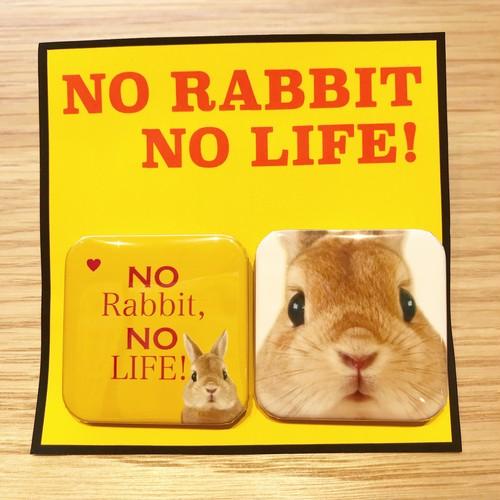 缶バッジ NO RABBIT NO LIFE