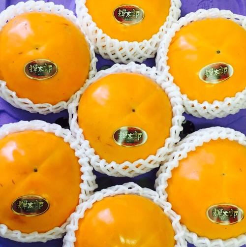 鳥取の甘柿「輝太郎柿」大玉2.7kg箱