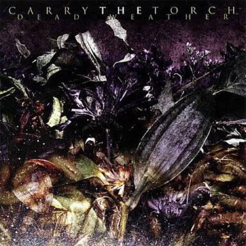 【USED】CARRY THE TORCH / DEAD WEATHER