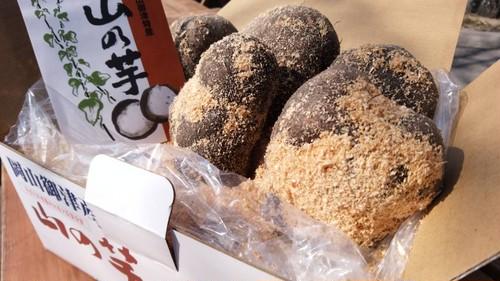 山の芋・御津の特産品(2kg)【予約受付中】