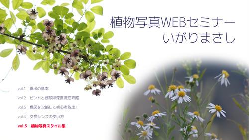 配信セミナー投銭+PDF返礼付き「植物写真WEBセミナーvol.5 植物写真スタイル集」