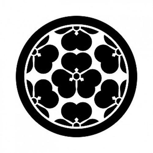 七つ酢漿草 高解像度画像セット