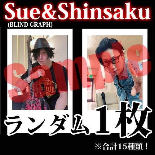 【チェキ・ランダム1枚】Sue&Shinsaku(BLIND GRAPH)