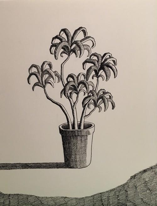 太久磨「自画像としての植物 ペン画23」