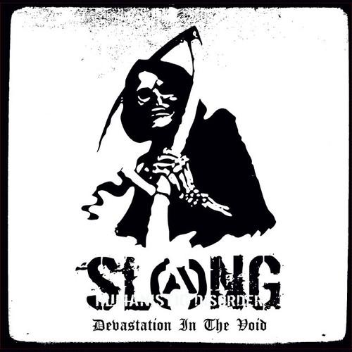 Devastation In The Void(LP)