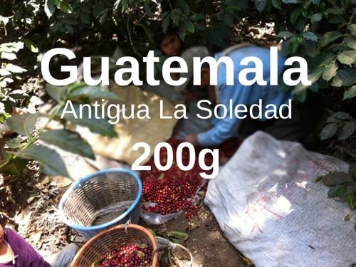 Guatemala | Antigua La Soledad  | コーヒー豆 200g