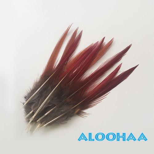 フェザー キンケイ錦鶏 10-15cm 10本 タヒチアンダンス衣装パーツ 材料