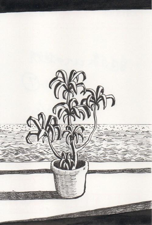 太久磨「自画像としての植物 ペン画7」