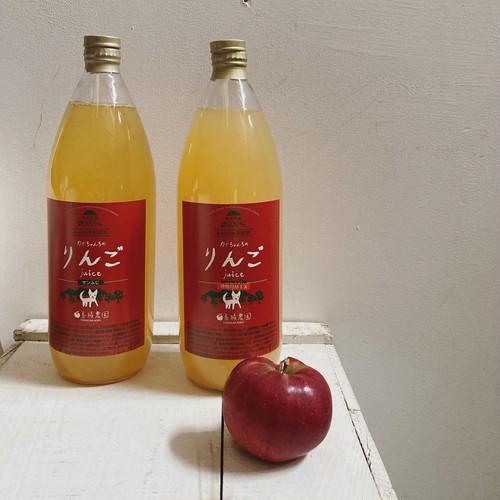 善積農園 カナちゃんちゃんちのリンゴジュース