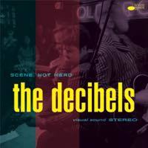 THE DECIBELS  / SCENE NOT HERD LP