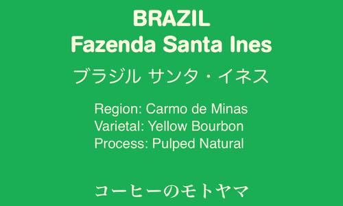 【ブラジル】 Santa Ines サンタ・イネス ☆中煎り 200g