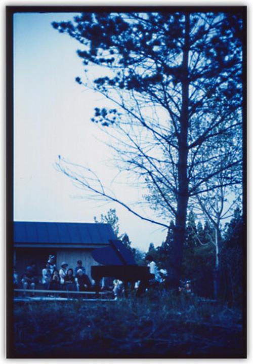 Photo Card コトン