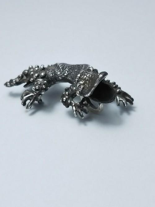 Leopard gecko top