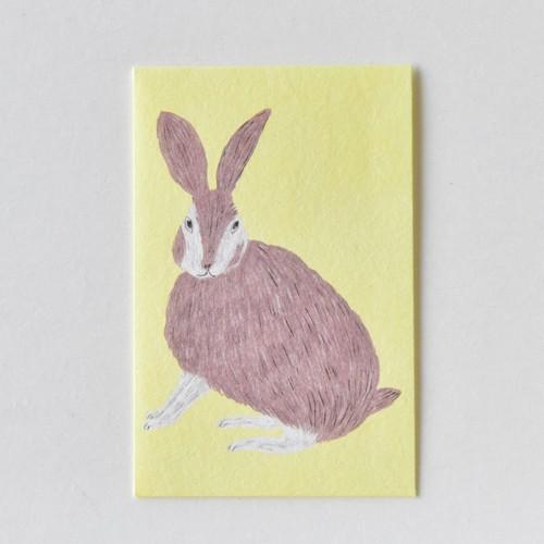 mm ぽち(多目的) Rabbit S