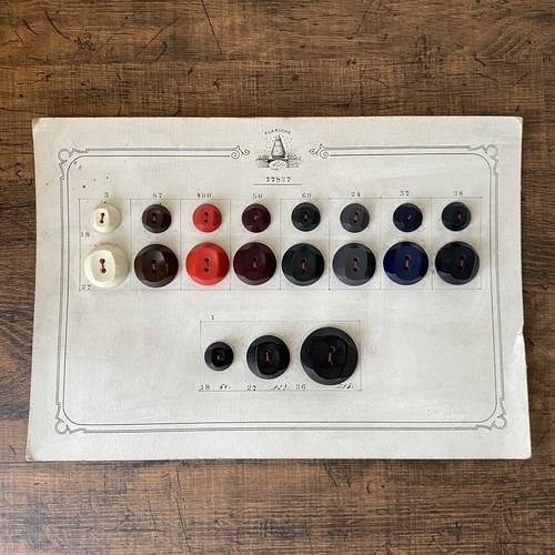 France ボタンサンプル・g /  de0166