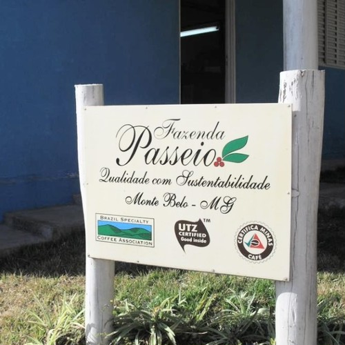 ブラジル パッセイオ農園 250g(中煎り)