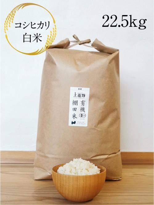 《令和2年産》有機棚田米コシヒカリ 白米 22.5㎏(玄米24㎏分)
