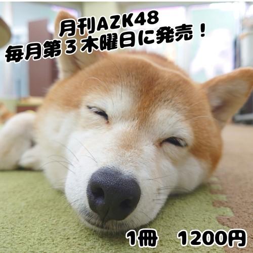 支援限定! 月刊AZK48