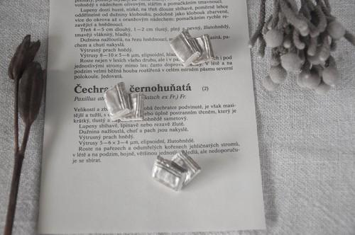 BOOKS 銀彩磁土ブローチ