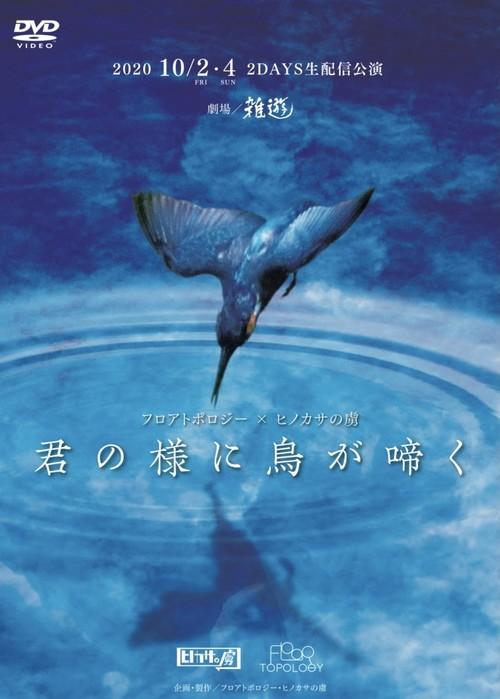 『君の様に鳥が啼く』DVD