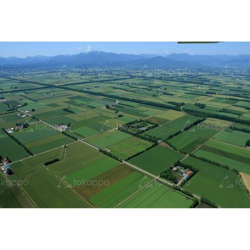 十勝平野の空撮