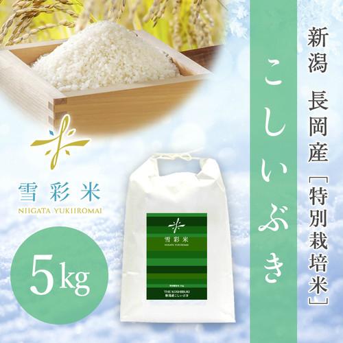 【雪彩米】長岡産 特別栽培米 新米 令和2年産 こしいぶき 5kg