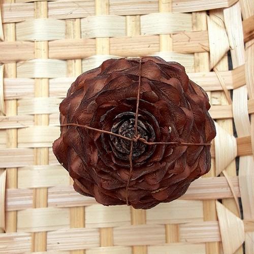 ヒマラヤスギの球果 D38