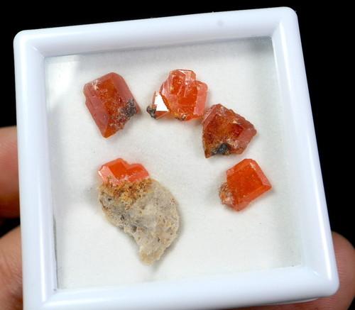 自主採掘!ルースケース入り#2 モリブデン鉛鉱  ウェルフェナイト Wulfenite WF030 天然石 鉱物 標本 原石