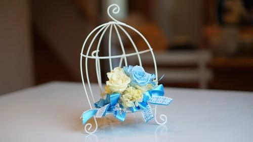 幸せの青い花