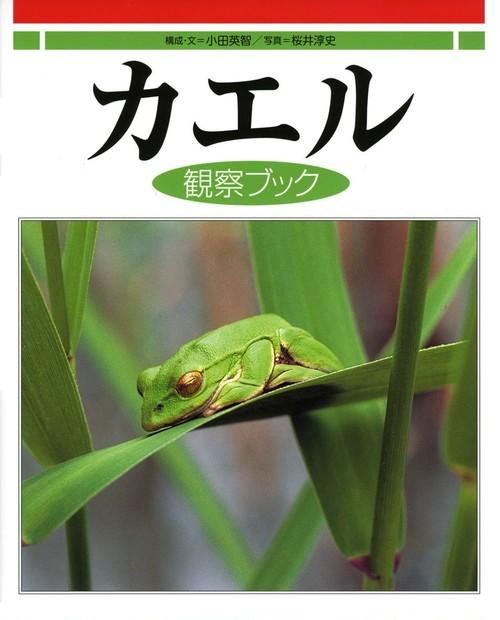カエルの図鑑 カエル観察ブック 大型本