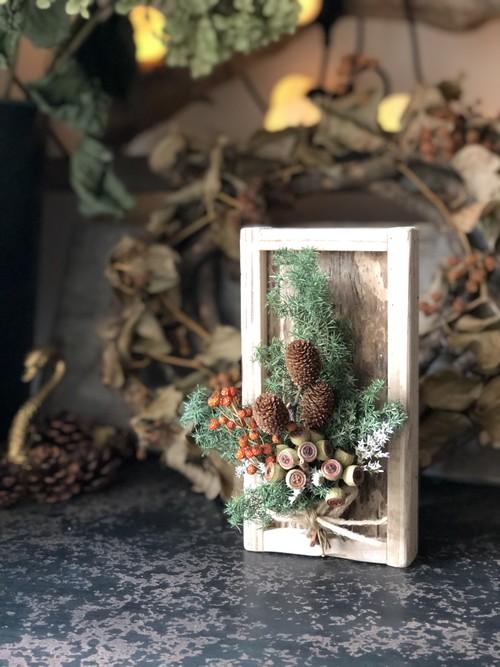 植物の標本!!ドライフラワーウッドプレート クリスマスA