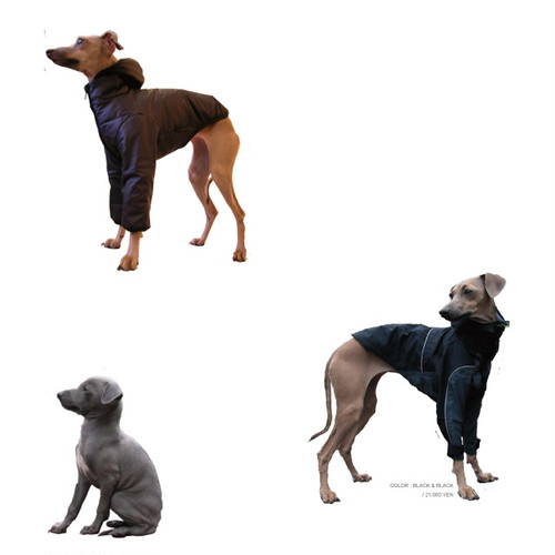 DOWN-JACKET For Italian Greyhound