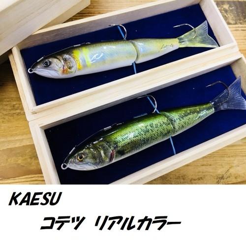 KAESU / コテツ