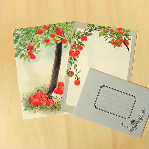 レターセット(A5)林檎 LS507