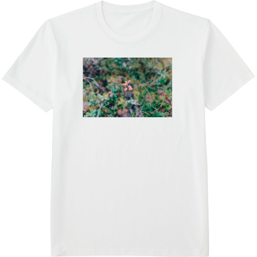25.Finland100 Tシャツ / そこに芽吹く。