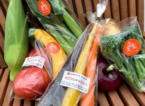 野菜セット(ミディアム)