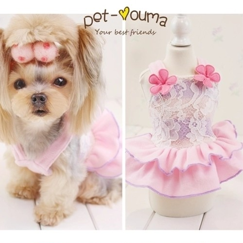 【アウトレット】★かわいい犬服ワンピ/ドレス   フリースボーダーレースワンピ