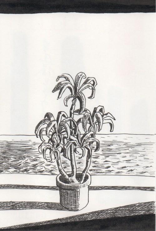 太久磨「自画像としての植物 ペン画6」